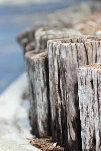 72dpi row of wood